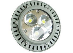 80W LED Canopy Light High Lumens LED Explosion Proof Lights