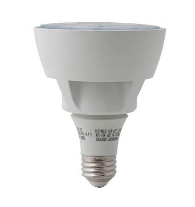 Daylight PAR30 LED Flood Light Bulb