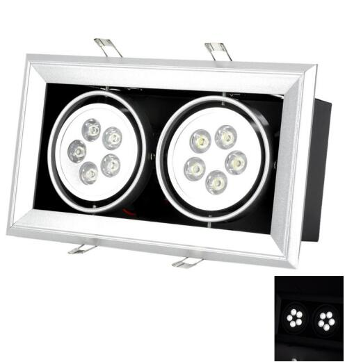 Double-Head 10W 900LM LED Downlight