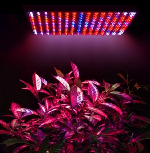 Indoor 14W 225 LED Grow Light Lamp
