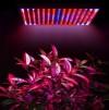 Indoor 14W 225 LED Grow Light Lamp