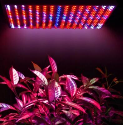Indoor 225 14W Blue Red Orange White LED Grow Light