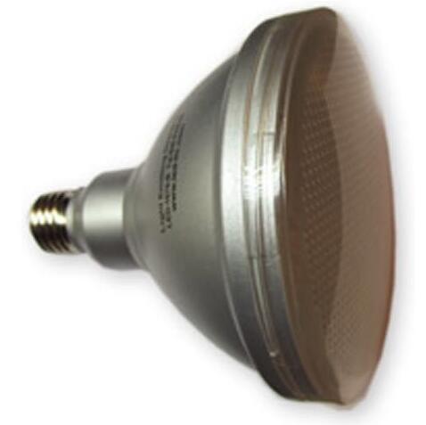 Medium Spot 120V PAR38 LED Bulb