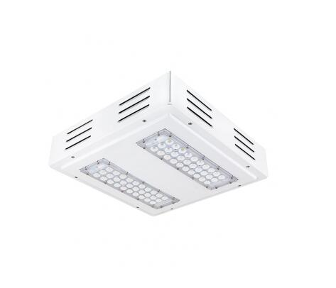 Natural White 60W LED gas station Lights
