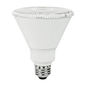 PAR30 14W 2700K LED Bulb