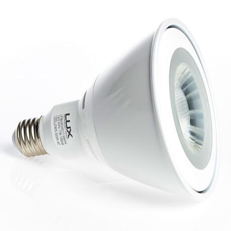 PAR38 E26 17W 80 CRI LED Bulb