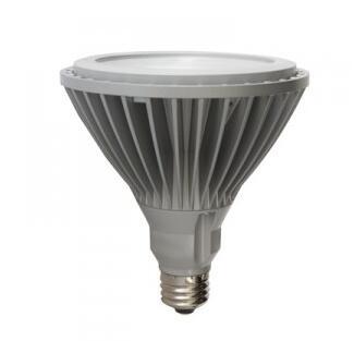 PAR38 E26 17W Flood 120V LED Bulb