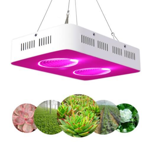 COB 200W Full Spectrum Indoor LED Grow Light