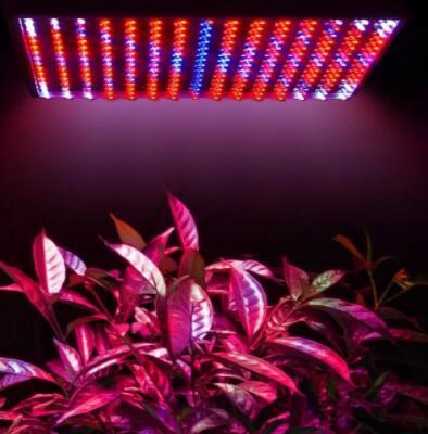 Indoor 225 14W Blue Red Orange White LED Grow Light