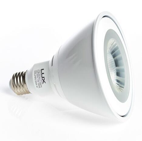 TG E26 17W PAR38 LED Bulb